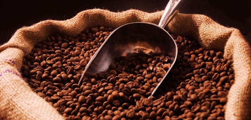 topico_40783_www-agron-com-br_2661_cafeicultores-brasileiros-evitam-investir
